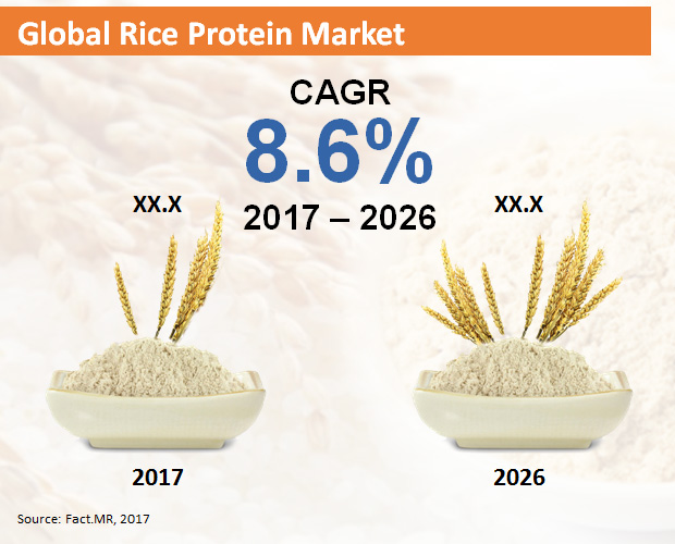 global-rice-protein-market[1]